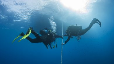 Photo of PITFALLS AND HAZARDS OF DIVING ROUTINE
